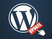 WordPress 4.2.2 Update